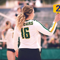 2nd year outside hitter, Brittany Rousseaux (16) of the Regina Cougars during the Women's Volleyball home game on Fri Jan 18 at Centre for Kinesiology, Health & Sport. Credit: Arthur Ward/Arthur Images