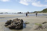 People walking on beach, Harris Beach State Park, Oregon