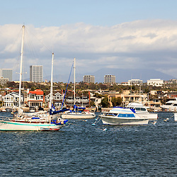 Photo of Newport Beach skyline in Orange County California. Include boats in Newport Harbor (Newport Bay) with Newport Beach and Fashion Island office buildings in the background. Newport Beach is a wealthy beach community along the Pacific Ocean in Southern California. Photo is high resolution and was taken in 2012.