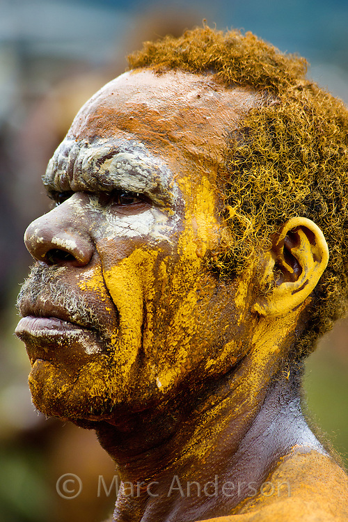 Portrait of a man dressed in traditional tribal dress for the Goroka Show, an annual Singsing Festival in the highlands of Papua New Guinea