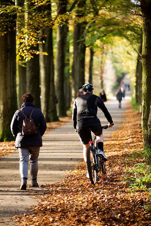 Bij Woudenberg wijkt een mountainbiker uit voor een voetganger in het bos op een mooie herfstdag.<br /> <br /> Near Woudenberg a mountainbiker passes a pedestrian in the woods on a nice autumn day.