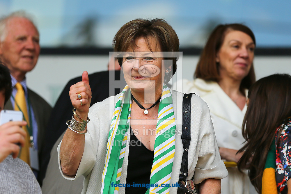 Joint majority shareholder of Norwich City, Delia Smith CBE celebrates after Norwich City beat Ipswich Town 3-1 during the Sky Bet Championship match at Carrow Road, Norwich<br /> Picture by Richard Calver/Focus Images Ltd +44 7792 981244<br /> 16/05/2015