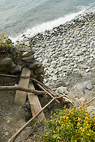 Driftwood ladder drops down the cliffside from the trail in Corniglia, Cinque Terre, Italy.