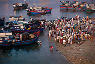 — Just after dawn, the fishing port at Nha Trang bustles with activity.