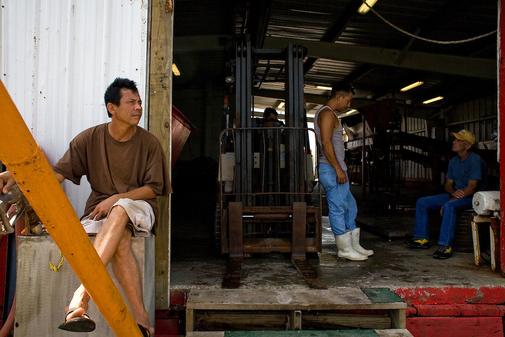 Fishermen and dockworkers sit idle at Dean Blanchard Seafood, Inc. in Grand Isle, LA on June 24, 2010 where a fishing ban has been put in place due to the B.P. oil spill. The seafood company once was working 24 hours a day and seven days a week during shrimping season, but has reduced operating hours and mostly sells gas and ice now. The company also laid off almost 80 workers according to owner, Dean Blanchard.