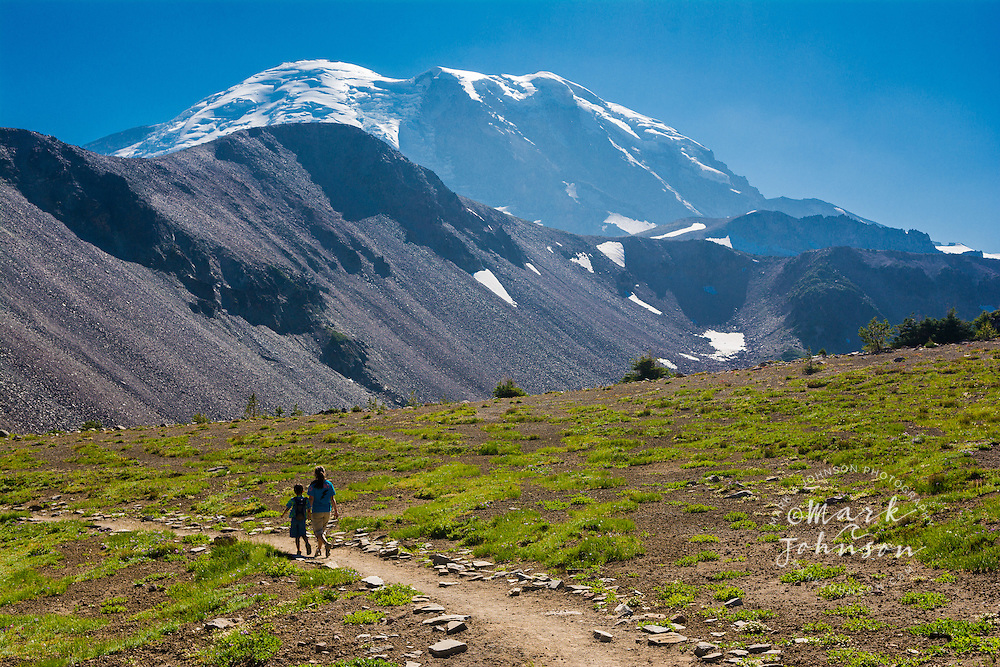 "Kids hiking on the Sourdough Ridge trail in the ""Sunrise"" section of Mt. Rainier National Park, Washington, USA"