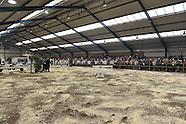 2015-04-oetelaar-show