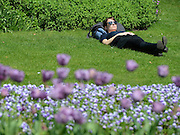 © Licensed to London News Pictures. 22/05/2012. London, UK A woman lies amongst the flowers in the sun in Hyde Park.  People enjoy the sunshine in London's Royal Parks today 22 May 2012. Photo credit : Stephen Simpson/LNP