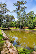 Pool, Pond, Royal Palace, Angkor Thom, Cambodia