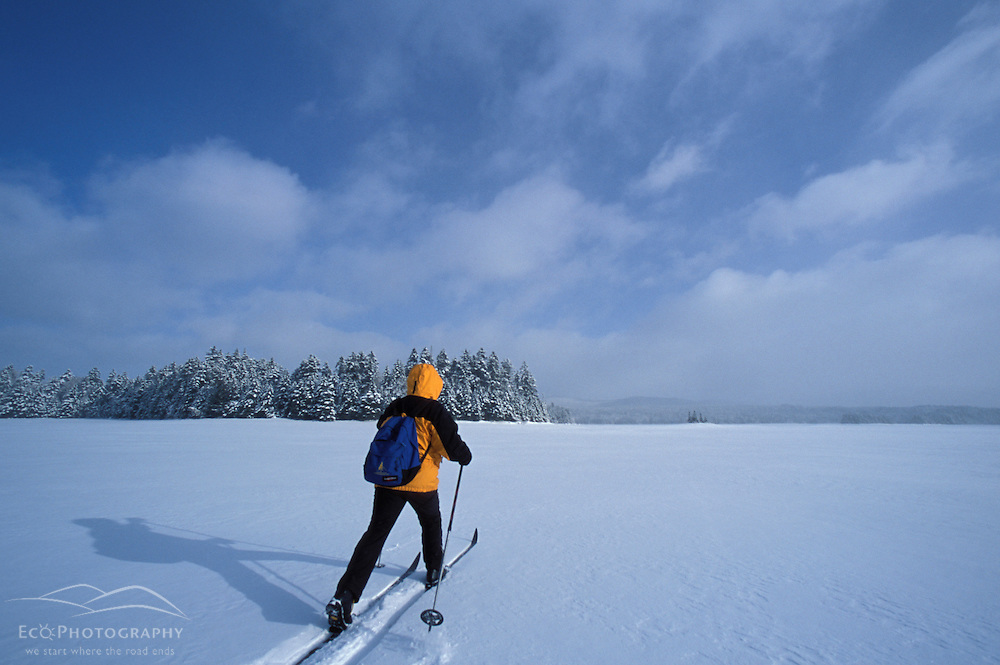 Cross-country skiing across Second Connecticut Lake.  Northern Forest.  Winter sports.  Pittsburg, NH