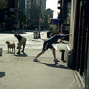 With space at a premium in the vast metropolis of Manhattan, New York City, locals find ways and means for pastime exercise and recreational activities as they go about their daily lives..Early morning jog and walking the dog a runner stretches in Greenwich Village on May 1, 2004. Photo Tim Clayton..