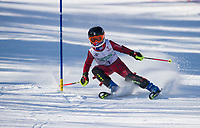 Paul Ladouceur Slalom ladies U12 first run.  ©2018 Karen Bobotas Photographer