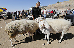 August 29, 2017 - Hebron, West Bank, Palestinian Territory - Palestinians gather at a livestock market, ahead of Eid al-Adha, in the West Bank city of Hebron. Eid al-Adha (the Festival of Sacrifice) is celebrated throughout the Muslim world as a commemoration of Abraham's willingness to sacrifice his son for God, and cows, camels, goats and sheep are traditionally slaughtered on the holiest day  (Credit Image: © Wisam Hashlamoun/APA Images via ZUMA Wire)