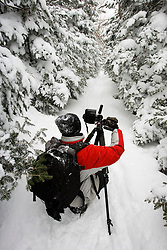 A photographer in the fresh snow on the Mount Willard Trail in New Hampshire's White Mountains.  Crawford Notch State Park.