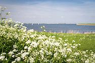 Het Amstelmeer is afgesloten van de Waddenzee met de 'Kleine Afsluitdijk', een proefproject voor de echte Aflsuitdijk.