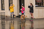 A group of young woman try to walk their dogs as severe flooding continued for the second day in the historic district as Hurricane Joaquin brings heavy rain, flooding and strong winds as it passes offshore October 4, 2015 in Charleston, South Carolina.