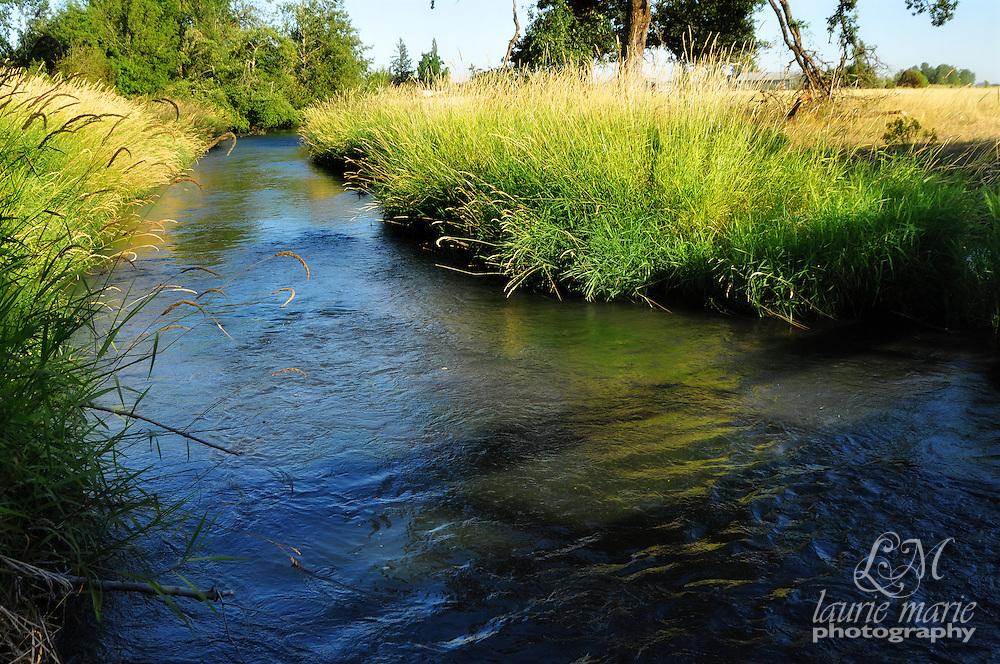 Mill Creek in rural Oregon