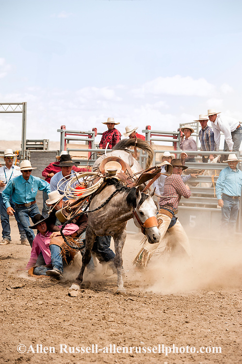Will James Roundup, Ranch Rodeo, Ranch Bronc Riding, Chad Donley, Hardin, Montana.