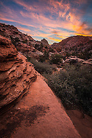 The sky explodes with color from sunrise in Zion National Park.