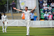 Yorkshire's Steven Patterson appeals to the umpire for a catch during the Specsavers County Champ Div 1 match between Somerset County Cricket Club and Yorkshire County Cricket Club at the County Ground, Taunton, United Kingdom on 16 May 2016. Photo by Graham Hunt.