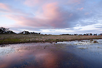 Vernal Pools at Sunset, Santa Rosa Plateau Ecological Reserve, California