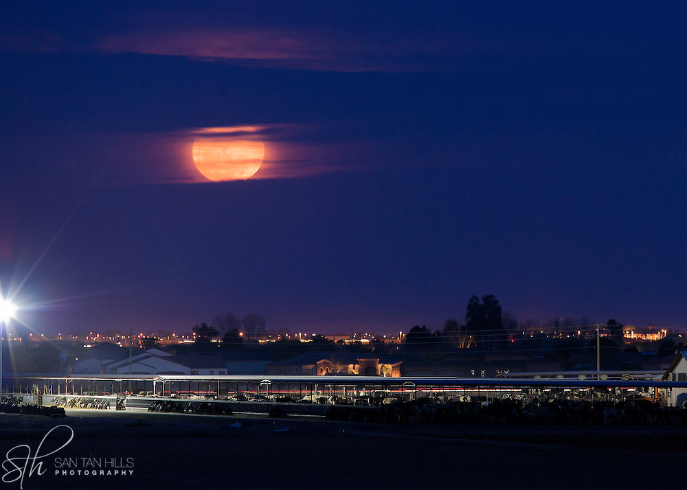 "A rare ""super moon"" shining through the clouds above a dairy farm - Chandler, AZ"