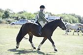 10 - Mounted Novice Horse