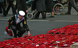 (c) London News Pictures. 14/11/2010.  A cadet lays wreaths at the foot of the Cenotaph today (Sun) during a remembrance service to honour of those who have died in wars and conflicts. Picture credit should read: Will Oliver/London News Pictures