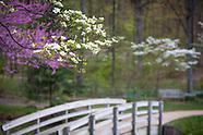 Edith Carrier Arboretum