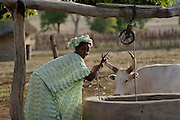 A woman pulls water from a well in the village of Darou Hidjeratou on Tuesday June19, 2007.