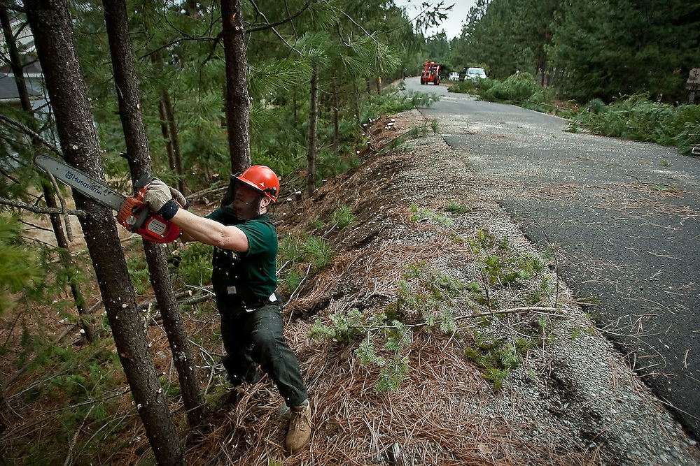 JEROME A. POLLOS/Press..Monte McCully, with the Coeur d'Alene Parks Department, trims some low branches off of trees lining the Prairie Trail near Player Drive. The city is thinning out the stand of trees to help promote healthy growth and decrease the fire hazard caused from the overgrowth.