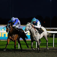 Kempton 29th October