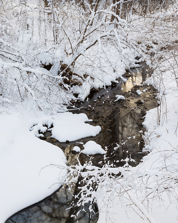 Landscape photograph of fresh snowfall along Pammel Creek.