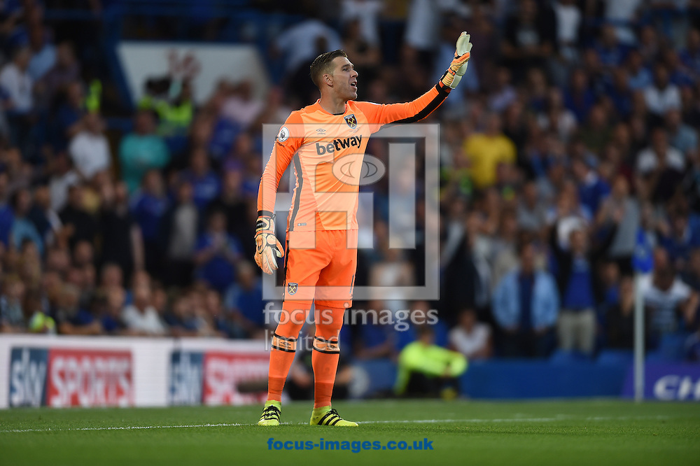 Adrian of West Ham United during the Premier League match at Stamford Bridge, London<br /> Picture by Daniel Hambury/Focus Images Ltd +44 7813 022858<br /> 15/08/2016