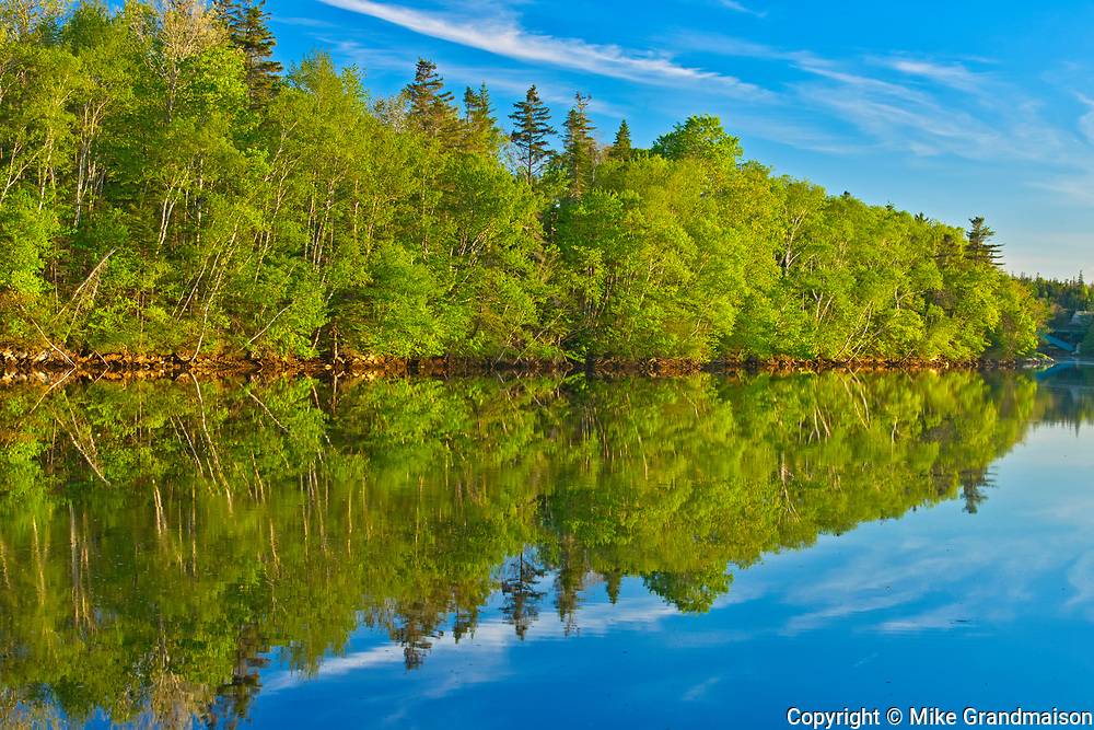 Trees reflected in East River at sunset, Sheet Harbour, Nova Scotia, Canada