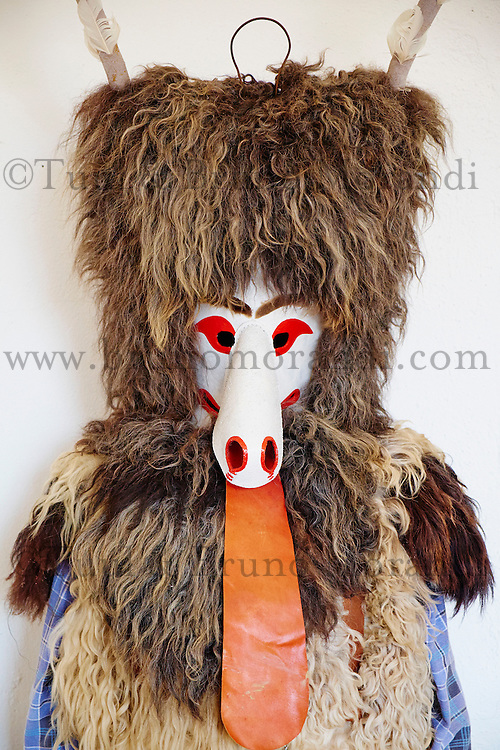 Slovenie, region de Basse-Styrie, Ptuj, ville sur les rives de la Drava (Drave), musee du Chateau, collection de masques de carnaval // Slovenia, Lower Styria Region, Ptuj, town on the Drava River banks, Castle museum, collection of carnival mask