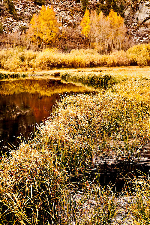 Fall colors and tall green grass surround the edge of North Lake in the Eastern Sierra Nevada Mountains just west of Highway 395.