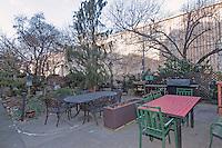 Garden at 55 Poplar Street