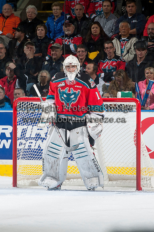 KELOWNA, CANADA - NOVEMBER 21: Jackson Whistle #1 of Kelowna Rockets stands in net against the Portland Winterhawks on November 21, 2014 at Prospera Place in Kelowna, British Columbia, Canada.  (Photo by Marissa Baecker/Shoot the Breeze)  *** Local Caption *** Jackson Whistle;