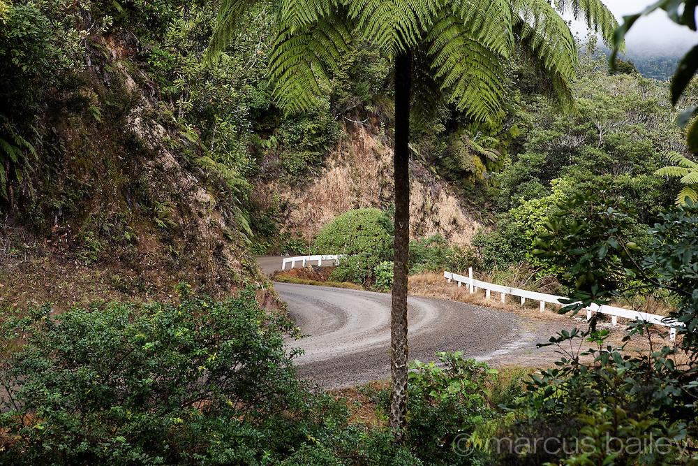 309 road, notorious gravel road with s bends through rainforest, coromandel, new zealand