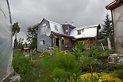LIVING OFF THE GRID<br /> The garden and home of the Castellani family. <br /> Anchor Point, Alaska, USA