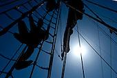 20130803 Tall Ships Races @ Szczecin