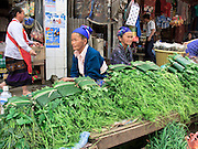 Mar. 13, 2009 -- VANG VIENG, LAOS: Hmong vendors sell cucumber greens in the Hmong market in Phou Khoun, Laos. Phou Khoun is about halfway between Vang Vieng and Luang Prabang.  Photo by Jack Kurtz