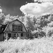 Abandoned Farmhouse - Uncertain, Texas - Infrared Black & White