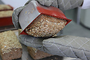 Freshly baked Wholewheat bread coated with sunflower seeds in a bakery