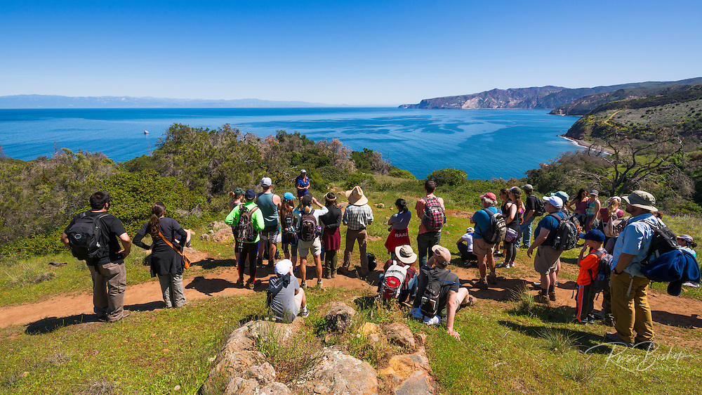 Hikers and docent on the Pelican Bay trail, Santa Cruz Island, Channel Islands National Park, California USA
