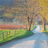 Hyatt Lane, in Cades Cove, during golden hour, with foggy field in the distance. Great Smoky Mountains National Park.