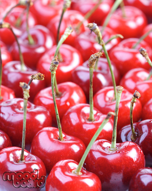 Studio shot of cherries - background