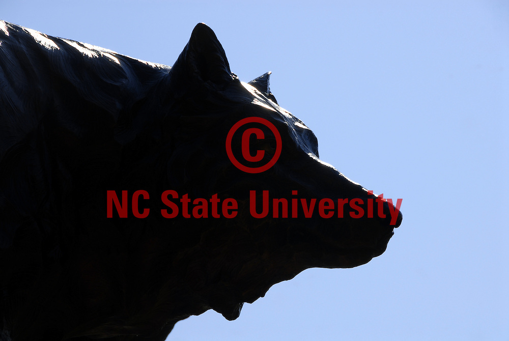 Wolf statue beside Park Alumni Center on Centennial Campus. PHOTO BY ROGER WINSTEAD