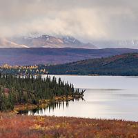 Fall colors along Wonder Lake, Denali National Park. © John McBrayer